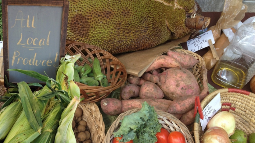 Part Telling The Truth About FarmtoTable In South Florida - Farm table tampa