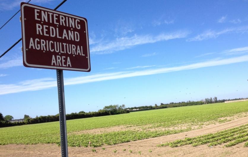 Redland agricultural area