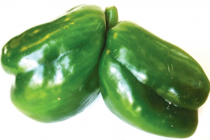 The Pepper Twins