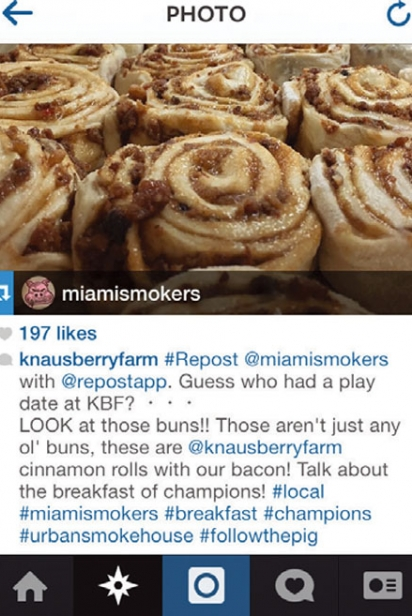 Knaus Berry Farm Instagram