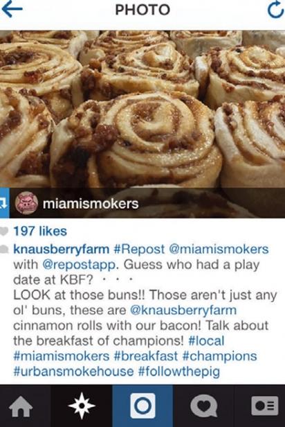 Knaus Berry Farm Instagram
