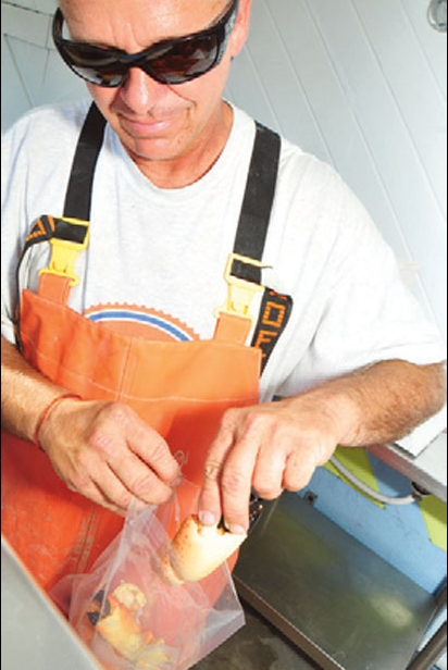 Partner Tony Osborn bags and labels stone crab claws