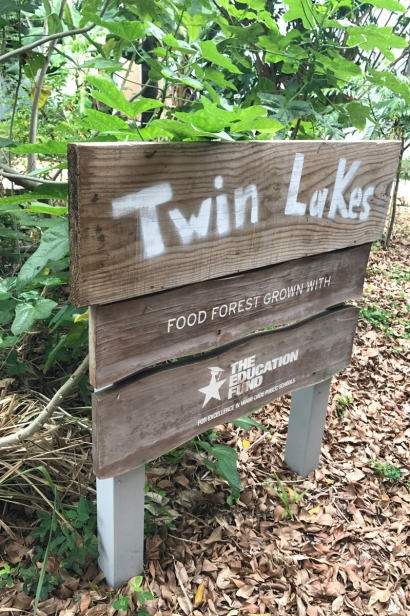 Twin Lakes Elementary food forest