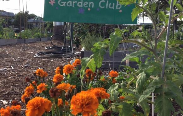 Oakland Park Community Garden