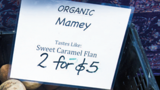 Organic mamey