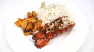 Grilled Florida lobster